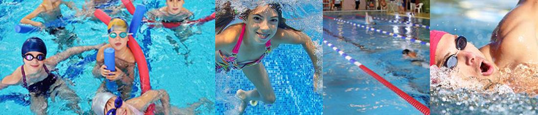 VfR Merzhausen Abteilung Schwimmen | Schwimmkurse von ausgebildeten Übungsleitern